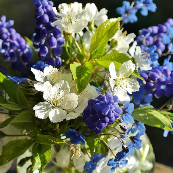 flowers, bouquet of flowers, spring
